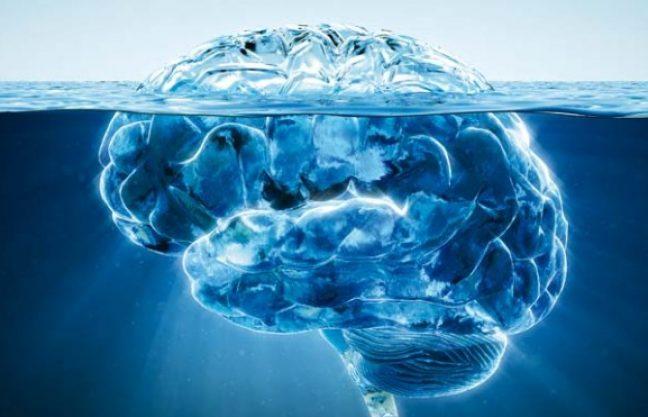 cerebro como iceberg no mar